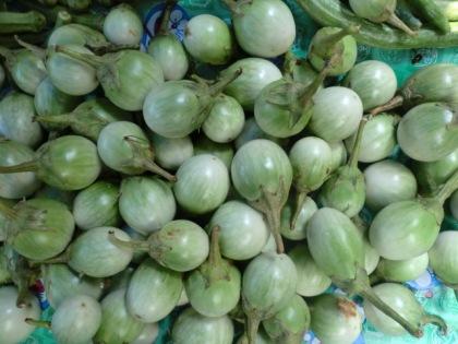 baby green eggplants