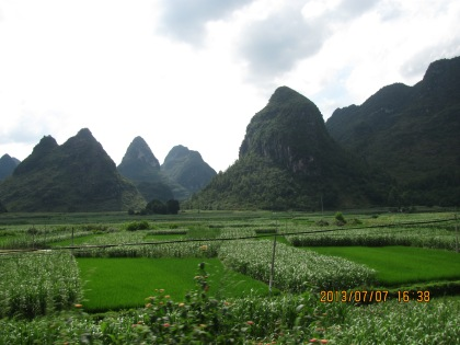 Karst mountains around Debao