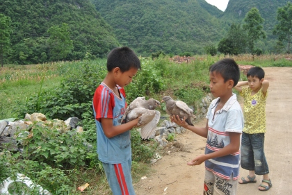 boys with birds in Debao